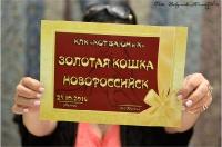 22-23 октября 2016 Новороссийск