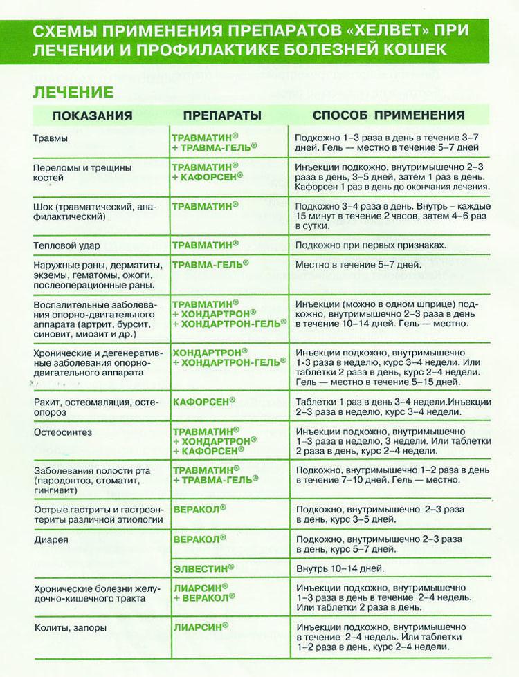 Схема профилактики и лечения кошек. страница 1
