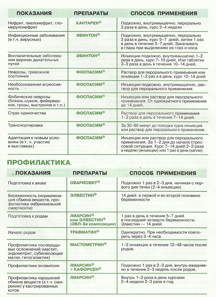 Схема профилактики и лечения