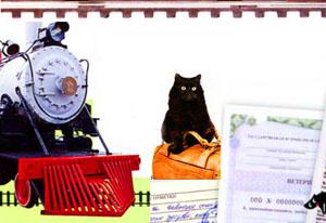доставка котенка