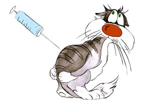 У котят симптомы